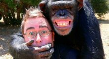Общество: Почему, глядя на дикую обезьяну, не стоит ей улыбаться