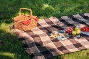 Идеи вашего дома: 12 стильных и полезных вещей, без которых пикник будет не в радость