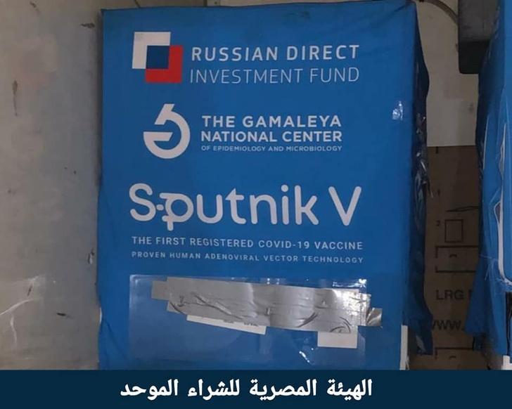 В Египет доставлена первая партия вакцины «Спутник V»