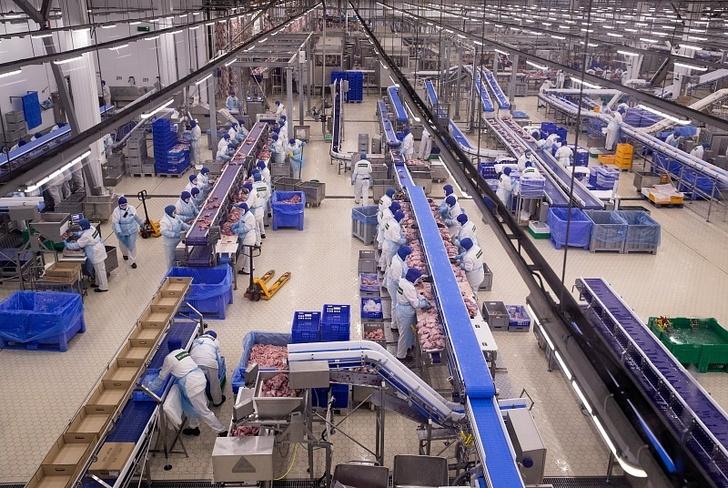 Компания «Дамате» открыла крупнейший в Европе завод глубокой переработки индейки